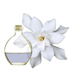 Esencia aromática de Gardenia.