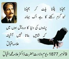 Allama Iqbal poetry about Shaheen is one of the most important topic from Allama Iqbal Poetry. Nice Poetry, Urdu Funny Poetry, Beautiful Poetry, Love Poetry Urdu, Iqbal Poetry, Sufi Poetry, Poetry Books, Poetry Quotes, Ali Quotes