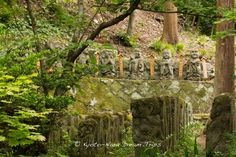 The mysterious Rakan (石像千二百羅漢) of Otagi Nenbutsu-ji (愛宕念仏寺) in Kyoto! The temple has a wonderful array of 1,200 carved stone figures of Rakan (石像千二百羅漢) (disciples of Shaka, the founder of Buddhism). These statues, in keeping with rakan traditions, are generally humorous and kawaii. The sculptures were donated in 1981 in honor of the refurbishment of the temple. Most were carved by amateurs, taught by sculptor Kocho Nishimura.