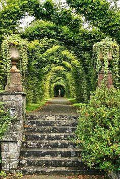 .Birr Castle Garden, Offaly, Ireland, photo by Luke Ravitch, ravitch via Flick