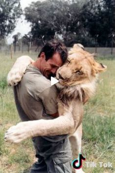 """Zoologist and self-taught animal behaviorist Kevin Richardson, aka """"The Lion Whisperer,"""" has a unique relationship with animals that has been cultivated Kevin Richardson, Cute Animal Memes, Cute Animal Videos, Baby Animals, Cute Animals, Wild Animals, Cute Gif, Baby Dogs, Big Cats"""