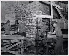 Cass Mill Interior, Mower Lumber Company, Cass, W. West Va, West Virginia University, Family History, Board, Interior, Indoor, Interiors, Genealogy, Planks