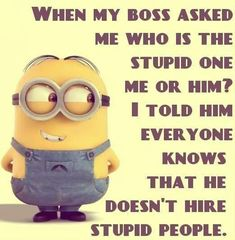 Boss ask who is stupid....