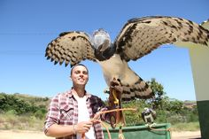 Me and the Harpy Eagle