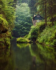 Green forest kingdom in the heart of Bohemian Switzerland Photography by Peaceful Places, Beautiful Places, Wonderful Places, Wooded Landscaping, Haus Am See, Cabin In The Woods, Paradise On Earth, Destination Voyage, Forest House