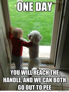 Too cute and funny!!