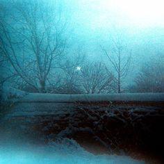 Cross-Processed Snow