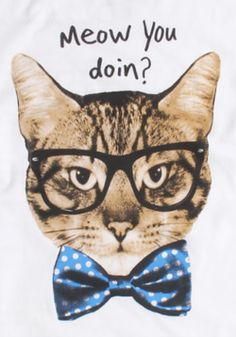 A hipster cat, wearing a bow-tie, uttering Friends-esque phrases?! Yes, Please!