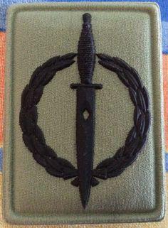 Recce Operator award - 10 year badge