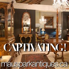 as well as CAPTIVATING! Social Media, Posts, Mirror, Park, Furniture, Home Decor, Messages, Decoration Home, Room Decor