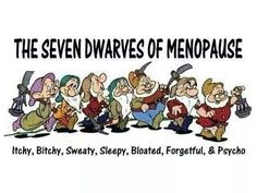 THE 7 DWARVES OF MENOPAUSE