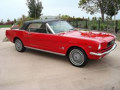 """1966 Ford Mustang. My dream car, but not for daily use. If I'm ever able to afford this car, it'd be """"Mommy's weekend ride"""". NO kids allowed!"""