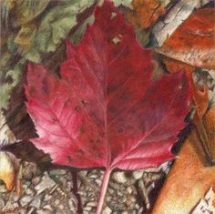 30 Best Betty Caithness Paintings Images On Pinterest