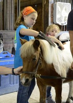 What is Equine Therapy?  Repinned by Apraxia Kids Learning. Come join us on Facebook at Apraxia Kids Learning Activities and Support- Parent Led Group.