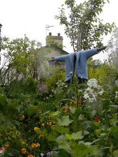 Âme vagabonde - (via Robin et le Sage: jardin Pierre Lapin)