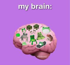 Fb Memes, Funny Memes, Cute Frogs, Pinterest Memes, Frog And Toad, Build A Bear, Free Therapy, Lose My Mind, Animes Wallpapers