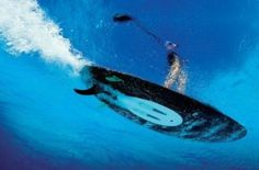 Surfing..