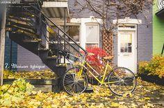 20131110 Ten on Ten Montreal 043 Typique de Montréal (Ten on Ten #Novembre & Safari photo)