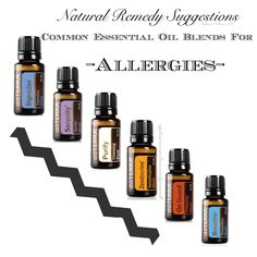 These are common essential oil blends that have properties that can help with allergies. Respiration Blend-Supports reduction and recovery from allergic responses. Detoxification Blend-Supports permanent reduction of reactivity. Cleansing Blend-Alleviates allergic responses to bites and stings. Digestion Blend-Supports digestion to calm food allergy responses. Protective Blend-Supports immune system. Calming Blend-Acts as an antihistamine.