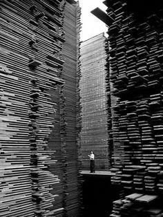 Man standing in the lumberyard of Seattle Cedar Lumber Manufacturing, 1939