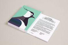 Actualité / Build - Stow Brothers Wetlands / étapes: design & culture visuelle