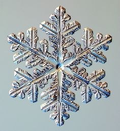 Real Snowflakes! - christmas Photo
