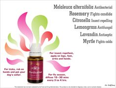 Order your oils for diffusing here http://anointingthefamily.com/  #1295938