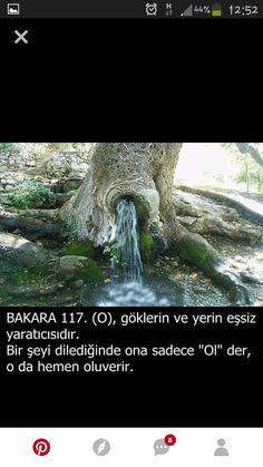 Turkish Language, Hadith, Quran, Allah, Prayers, Nature, Landscape, Truths, Naturaleza