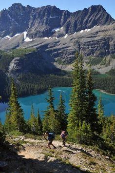 Lake O'hara - British Columbia - Canada