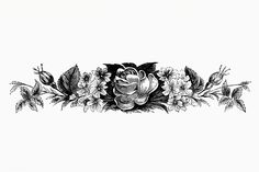 A new Creative Commons search tool for creators seeking to discover and reuse free resources with greater ease. Rose Sketch, Rose Illustration, Plant Vector, Small Tattoos For Guys, Tattoo Bracelet, Blooming Flowers, Nature Paintings, Horse Head, Free Illustrations