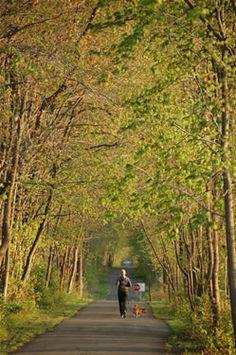 Henry Hudson Trail - Monmouth County NJ