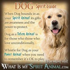 Dog Spirit Totem Power Animal Symbolism Meaning Spirit Animal Quiz, Spirit Animal Totem, Animal Spirit Guides, Your Spirit Animal, Animal Reiki, Spiritual Animal, Animal Meanings, Animal Symbolism, Animal Espiritual