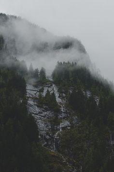 Vintage & Nature Blog