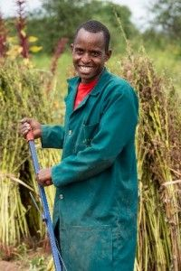 The Staff Canteen: Farm Africa is shining a spotlight on a project being funded by to transform the lives of smallholder farmers in thanks to help from a tiny seed. International Development, Canteen, A Comics, People Around The World, Tanzania, Farmers, Spotlight, Africa, Sports