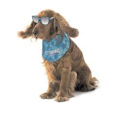 Η Μπαντάνα ψύξης IMAC για σκύλους, βοηθάει στην διατήρηση χαμηλής θερμοκρασίας στο σώμα των σκύλων. Ιδανική για...