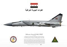Iraqi Air Force . القوة الجوية العراقية No.96 Squadron. Tammuz/al-Taqaddum AB, 1985