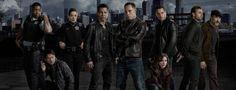 Critique d'une excellente fin de saison pour #ChicagoPD avec Jason Beghe en parfait anti-héros. #Spoilers.