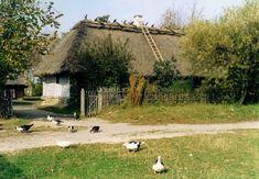 Muzeum Wsi Lubelskiej :: Wyżyna Lubelska