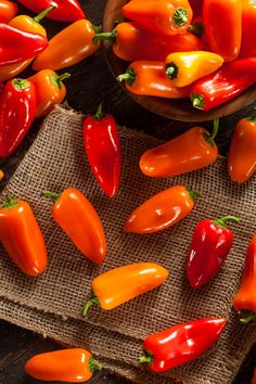 Organic Hot Peppers ~ Brent Hofacker Photography