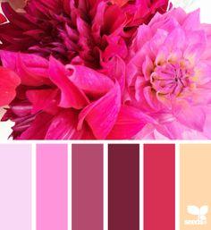 Flora Bright - http://design-seeds.com/index.php/home/entry/flora-bright7
