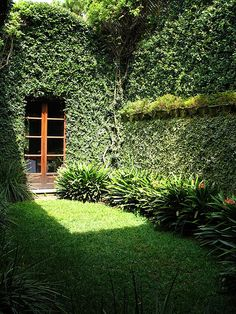 A gorgeous little garden niche...  Leeny: Shine a little light on your HEART. It may be overgrown but the door is always open.