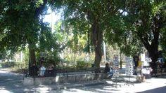 Construida en 1519, la Plaza de Armas es la mas antigua y una de las más agradables de La Habana y en tiempos de la colonia era el centro administrativo de la ciudad.  En la Plaza de Armas se ubica el Palacio de los Capitanes Generales, uno de los más bellos ejemplos de arquitectura bárroca de latinoamérica y residencia de los Capitanes Generales españoles desde 1791 hasta 1898.