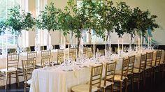 Gorgeous, fresh table decorations -sans flowers!
