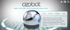 Ozobot - a programmable mini robot.