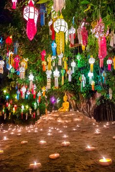 5 Best Festivals in Thailand Festival Lights, Art Festival, Festival Of Light, Thailand Festivals, Thai Decor, Full Moon Party, Traditional Lanterns, World Thinking Day, Henna Party