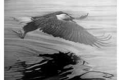 Eagle Flying Over Rippling Water