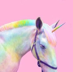 "veryprivateart: "" Photo based digital art by Ramzy Masri aka Space Ram Teen Girl at Heart, Rainbow Witch, Nickelodeon Design, NYC Queer "" Unicorn Store, Unicorn Art, Rainbow Unicorn, Unicorn Pics, Happy Unicorn, Real Unicorn, Walpapers Cute, Handsome Jack, The Adventure Zone"