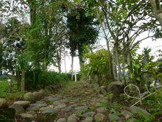 Sendero de devoción en el Jardín de María