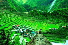 Banaue Rice Terraces, Ifugao Province, Philippines – December 2013