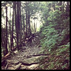 ((Hike the Appalachian Trail all the way through)) 6. This is my picture from a trip to the Smokey Mtns in June on the Appalacian Trail. If I had an entire year off work, I would hike the whole thing! Georgia to Maine :) #bareMinerals #READYtowin
